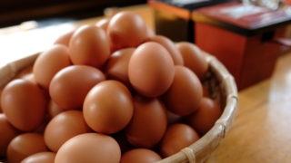 卵かけご飯が絶品な関西の専門店【但熊】